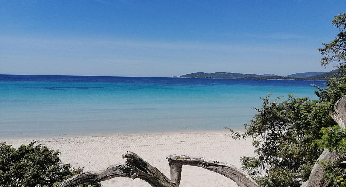 10 Spiagge da Visitare nei Dintorni di Alghero